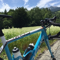 Bicycle and Soba Field