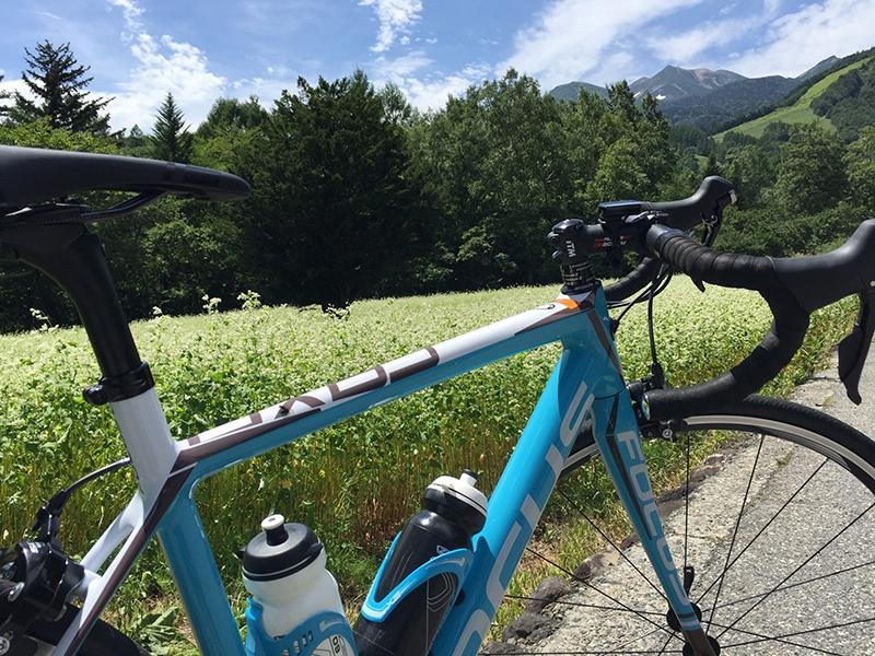 そば畑と自転車